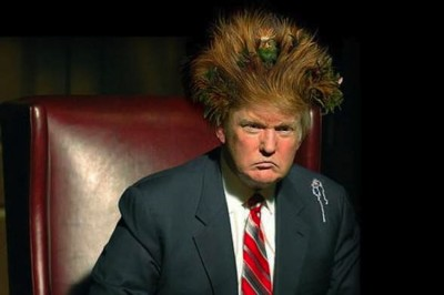 donald-trump-with-nest-hair-style-very-funny-image