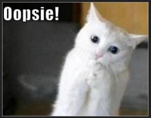 oopsie cat
