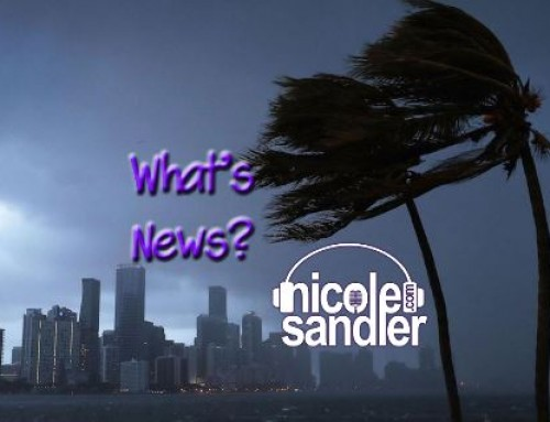 9-12-17 What's News – The Post-Irma Edition