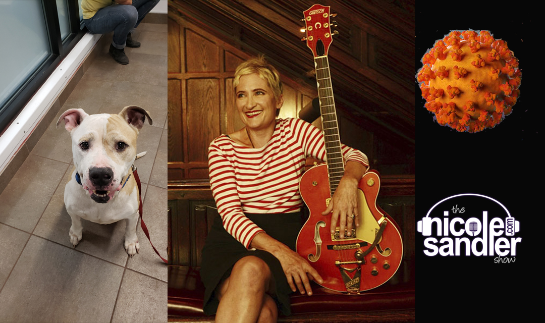 3-20-20 Nicole Sandler Show – What To Do When You're Sheltering with Jill Sobule and More
