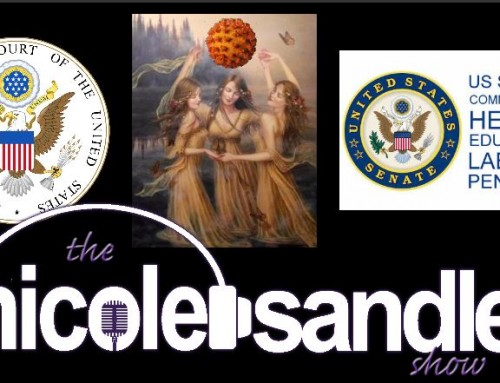 5-12-20 Nicole Sandler Show -Split Screen Tuesday- SCOTUS, Senate hearings and the Gliberal Goddesses @GottaLaff and @ShesHistoryAmy