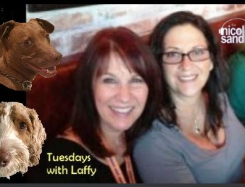 9-15-20 Nicole Sandler Show -Tuesdays with @GottaLaff