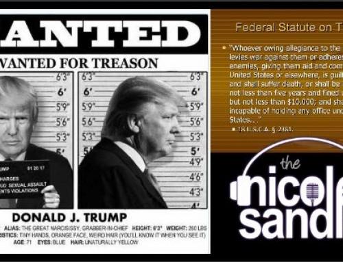 11-23-20 Nicole Sandler Show – Traitorous, Treasonous Trump